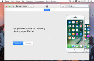 Программа iTunes должна отобразить телефон