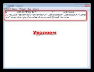 Очистка файла index.txt