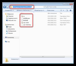 В директорию C:\Program Files\OpenVPN\config производится копирование ранее перенесенных файлов