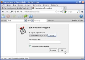 Параметры клиента BitTorrent