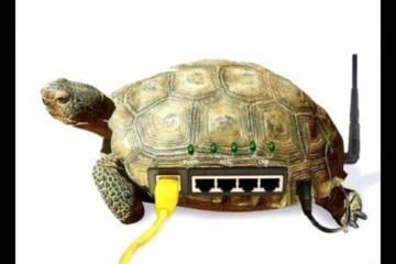 Если упала скорость wi-fi на ноутбуке, то не стоит огорчаться раньше времени
